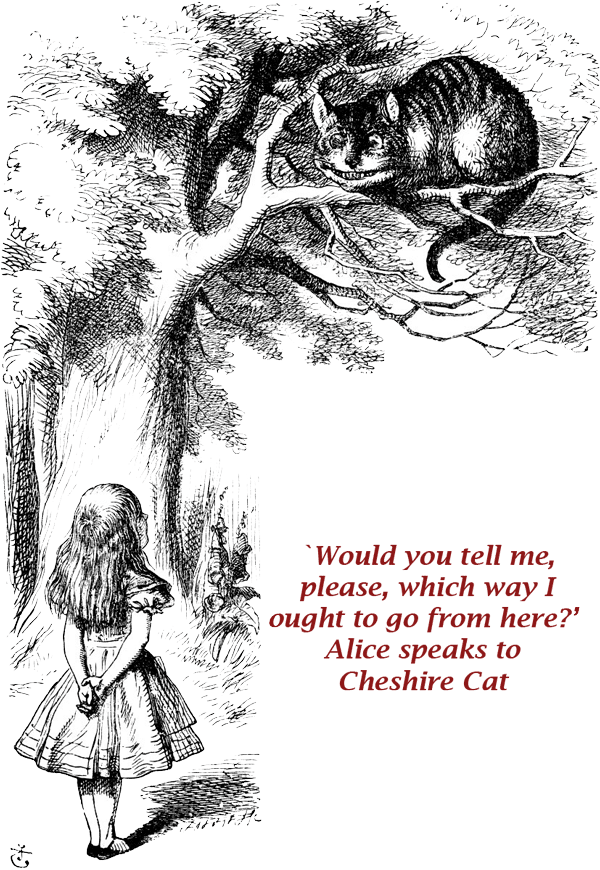 Chesire Cat Quote